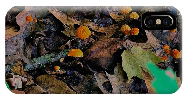 IPhone Case featuring the photograph Mushrooms And Leaf Litter by Lukas Miller