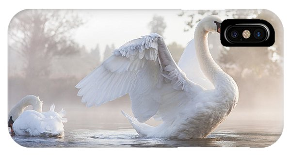 Ripples iPhone Case - Mute Swan Cygnus Olor Stretching On A by Kevin Day
