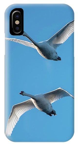 Mute Swans In Flight IPhone Case