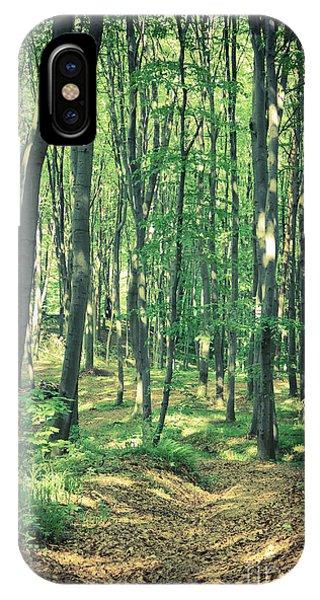 Hiking Path iPhone Case - Mysterious Dark Forest Near Rzeszow by Mffoto
