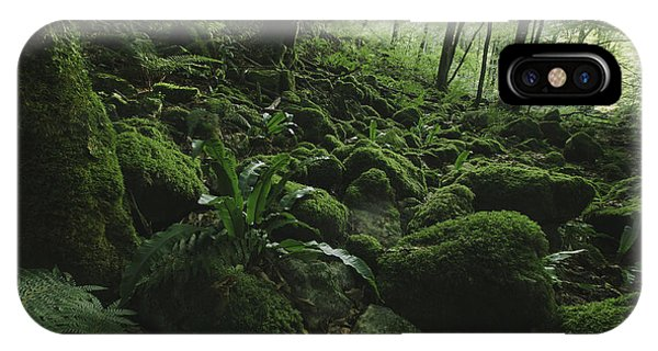 Boulder iPhone Case - Natural Green Forest With Moss And Lush by Andreiuc88