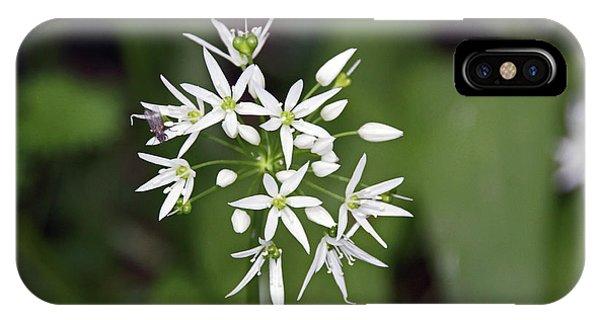 Neston. Wild Garlic. IPhone Case