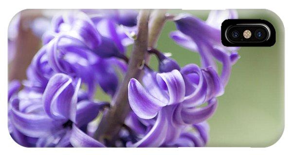 New Year Purple IPhone Case