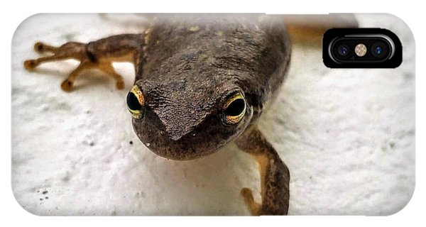 IPhone Case featuring the photograph Ninja Frog by Vincent Autenrieb