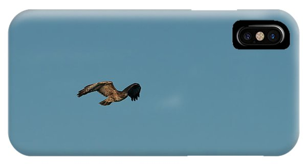 IPhone Case featuring the photograph Northern Harrier In A Hurry by Jon Burch Photography