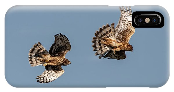 Northern Harriers 7 IPhone Case