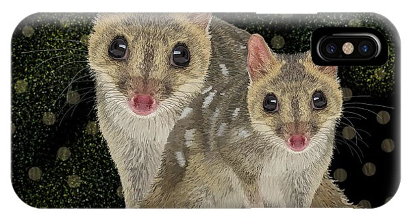 Northern Quoll 3 IPhone Case