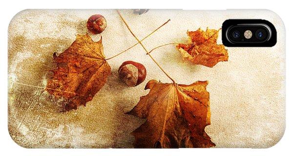 IPhone Case featuring the photograph November Mood by Randi Grace Nilsberg
