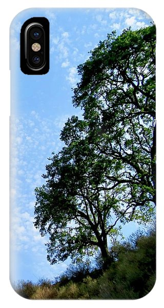 Oaks And Sky IPhone Case