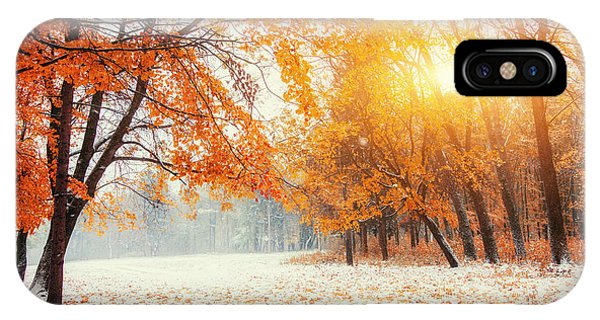 Deciduous iPhone Case - October Mountain Beech Forest With by Standret