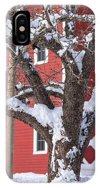 New England Barn iPhone Case - Old Apple Tree Red Barn Winter In New Hampshire by Edward Fielding