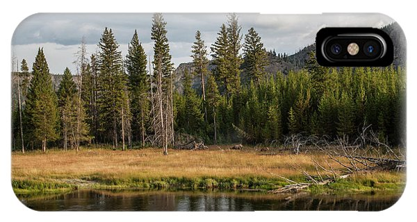 IPhone Case featuring the photograph On The Banks Of The Madison River by Lon Dittrick