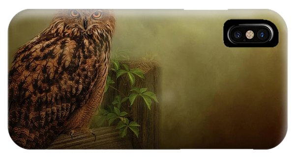 On The Fence  IPhone Case