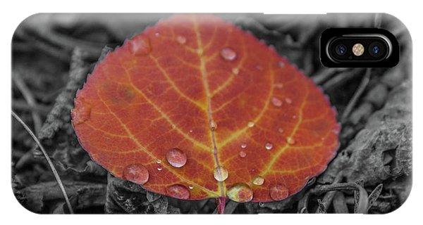Orange Aspen Leaf IPhone Case
