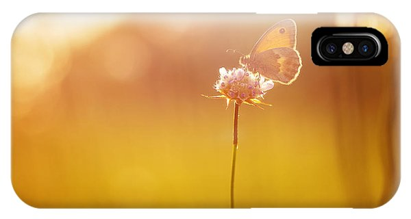 Serenity iPhone Case - Orange Butterfly Seating On Wild Pink by Nature Photos