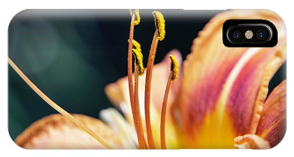 Orange Day Lily Stamen IPhone Case