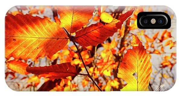 Orange Fall Leaves IPhone Case