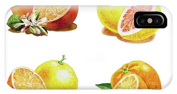 Grapefruit iPhone Case - Orange Grapefruit Lemon Watercolor Fruit Illustration by Irina Sztukowski