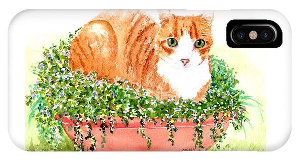 Orange Tabby Cat In Flower Pot IPhone Case