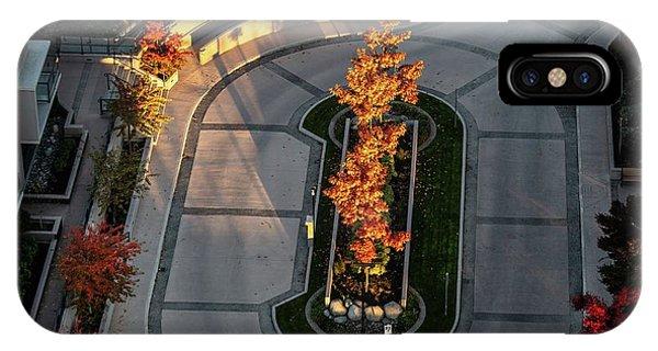 Orange Trees In Autumn IPhone Case