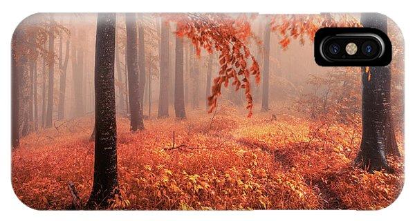 Orange Wood IPhone Case