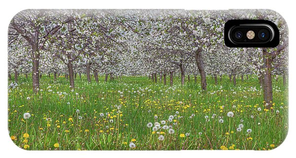 IPhone Case featuring the photograph Orchard Blooms by Paul Schultz