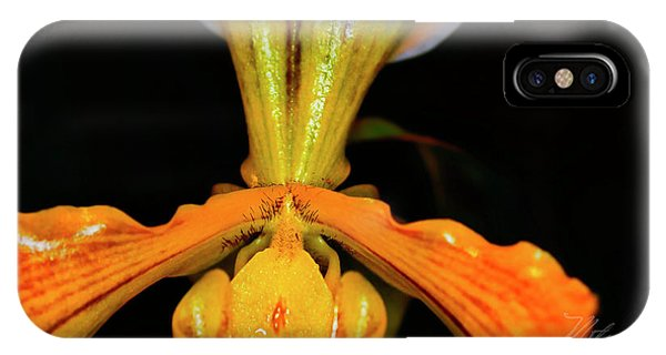 Orchid Study Five IPhone Case