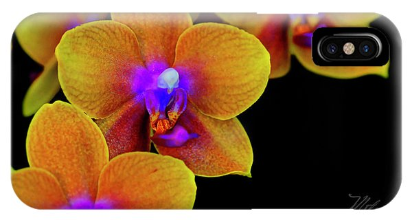 Orchid Study Ten IPhone Case