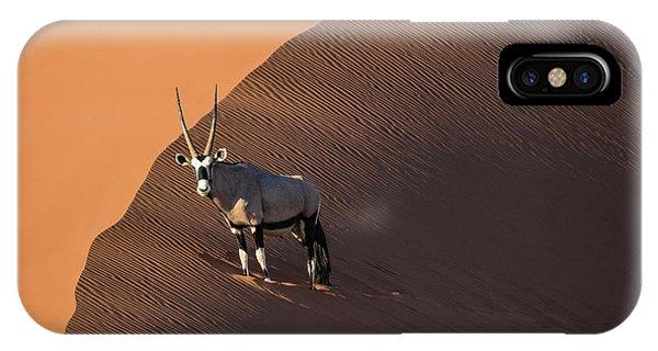 Oryx On The Edge, Namibia IPhone Case