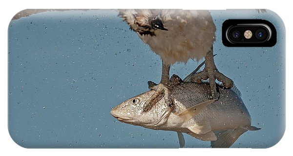 iPhone Case - Osprey Morning Catch Up Close by Susan Candelario