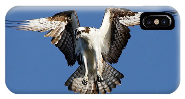 IPhone Case featuring the photograph Osprey by Sue Harper