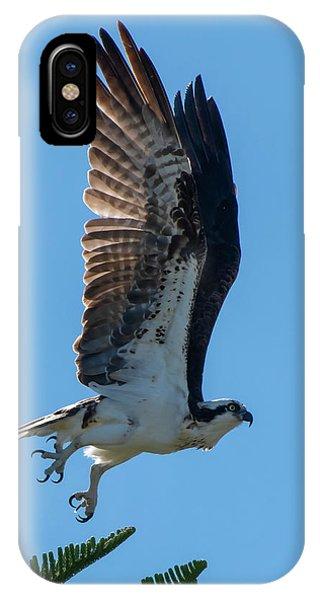 Osprey Taking Flight IPhone Case