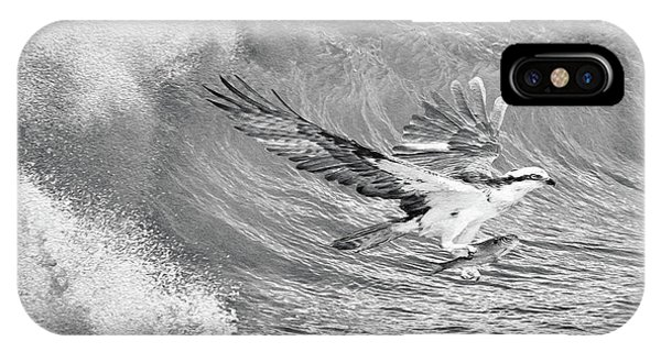 Ospreys iPhone Case - Osprey The Catch Bw by Laura D Young