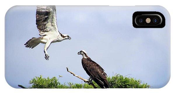 Ospreys At Blue Cypress Lake IPhone Case