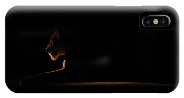 Outline African Lion IPhone Case