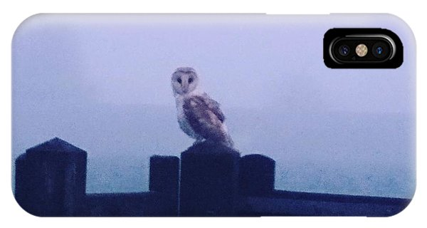 Owl In The Mist IPhone Case