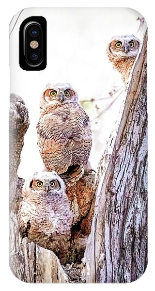 Owl Trio Standing Guard IPhone Case