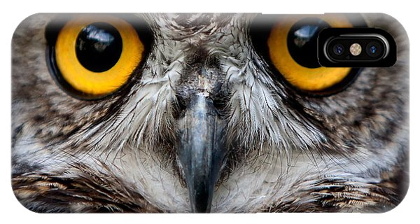 Flight iPhone Case - Owls Are The Order Strigiformes by Ammit Jack