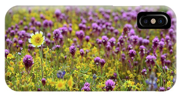 iPhone Case - Owl's Clover And Wildflowers At Shell Creek by Kathy Yates