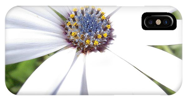 Page 13 From The Book, Peace In The Present Moment. Daisy Brilliance IPhone Case