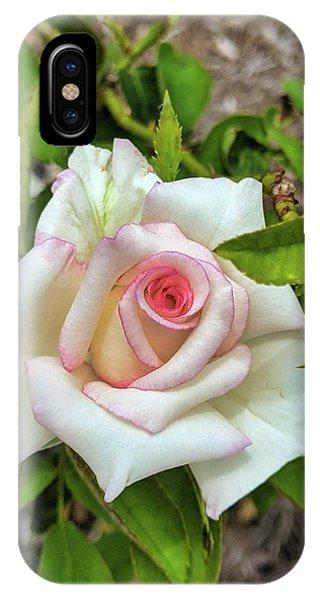 Pale Rose IPhone Case