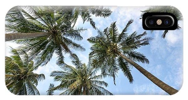 Palms  Beach IPhone Case