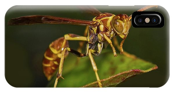 Paper Wasp IPhone Case