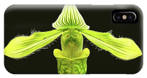 Paphiopedilum Venustum Closeup IPhone Case