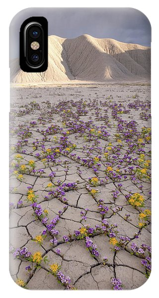 Parched Earth IPhone Case