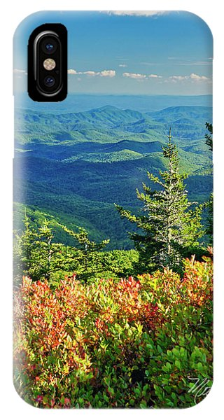 Parkway Tree IPhone Case