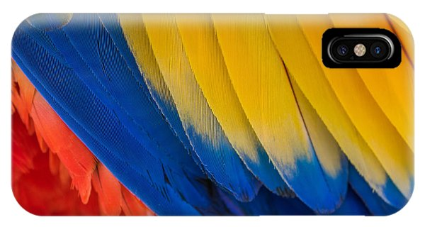 Parrots iPhone Case - Parrot. Multi-colored Feathers. Macaw by Roman Khomlyak