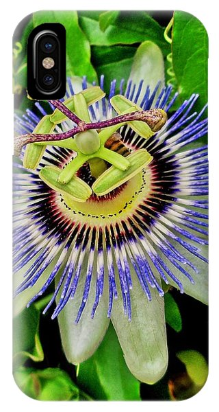 Passion Flower Bee Delight IPhone Case