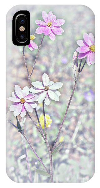 IPhone Case featuring the photograph Pastel Paper Daisies by Elaine Teague