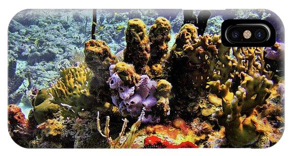 Patch Reef Bluff IPhone Case